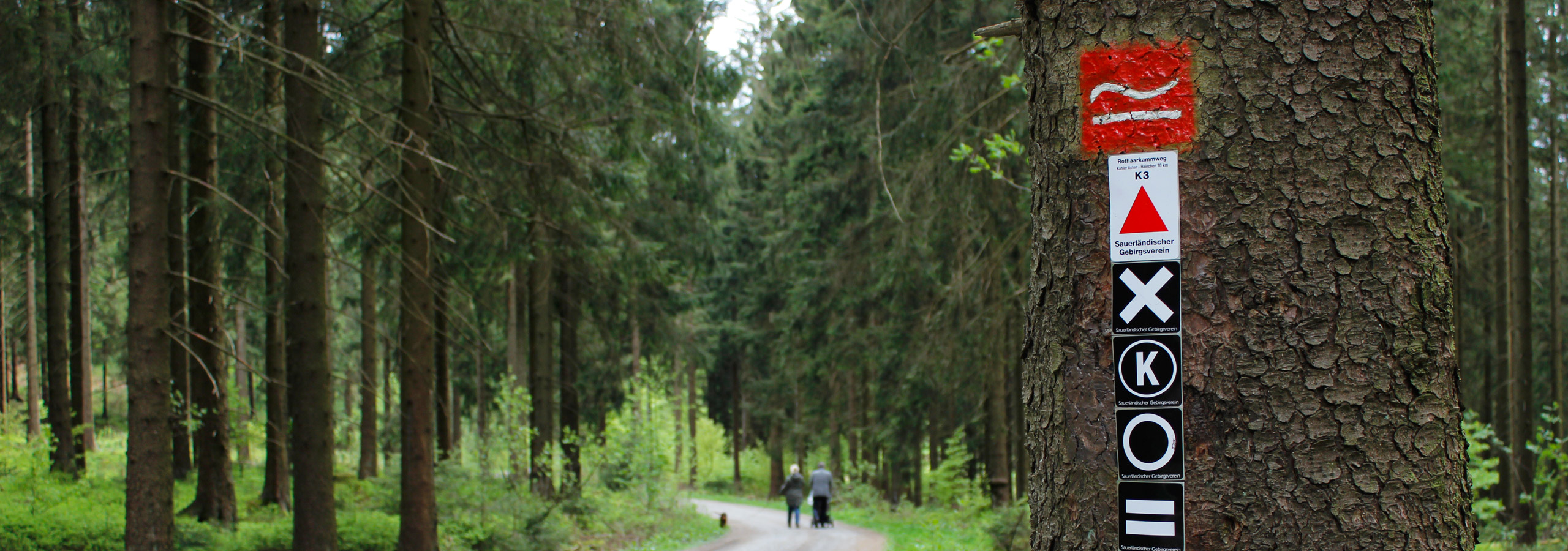 Die SGV Abteilung Hilchenbach zeichnet Wanderwege im Gebiet der Stadt Hilchenbach